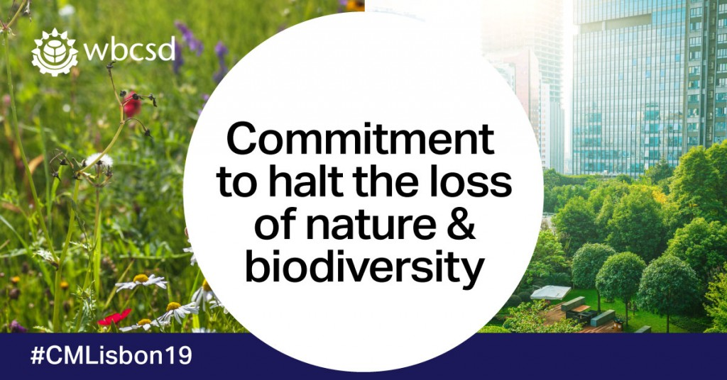 Business networks in 24 countries pledge immediate action to halt the deterioration of Nature and the loss of biodiversity - BCSDH is among the signatories