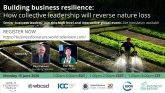 Building business resilience: How collective leadership will reverse nature loss